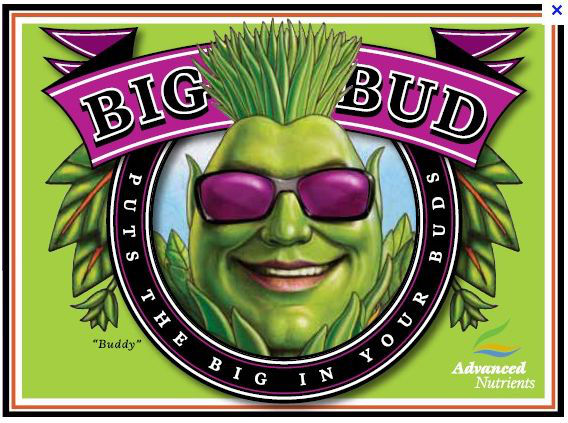 Big Bud logo of Advanced Nutrients