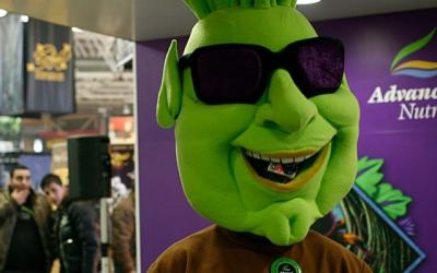 A man with marijuana bud suit