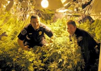 cops-w800-h600