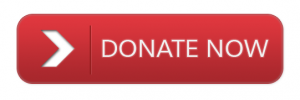 Donate-Button-w650